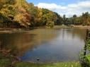 Page Park Pond. Spent many days here as a boy.