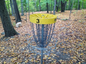 Our walk today went through a disc golf course.